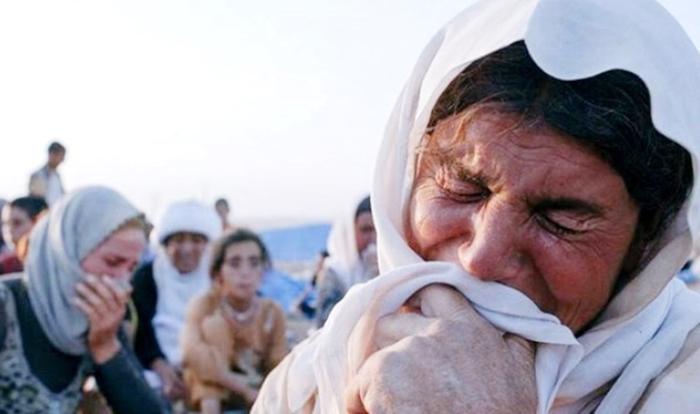 Termên 104 Kurdên Êzidî yên gundê Koço bo Şingalê tên vegerandin