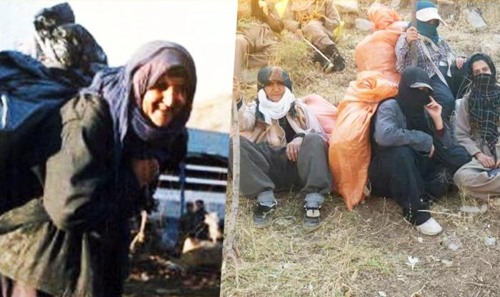 Parlamentarê Îranê: Dema em dibînin jinên Kurd kolberiyê dikin em şerm dikin