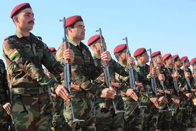 Almanya, Peşmerge'ye yönelik eğitime yeniden başladı