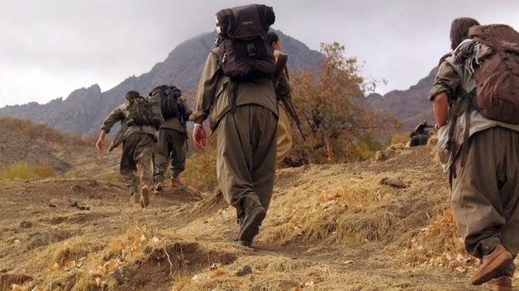 Şengal Kaymakamı'ndan PKK hakkında açıklama!