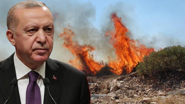 Erdoğan'dan 'yangın' açıklaması: Boş verip de geçiştirilecek bir şey değil!