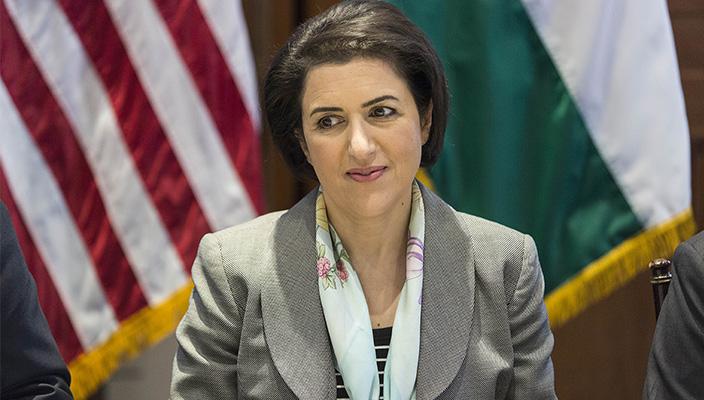 Kürdistan Temsilcisi, ABD'li bir grup senatörle görüştü